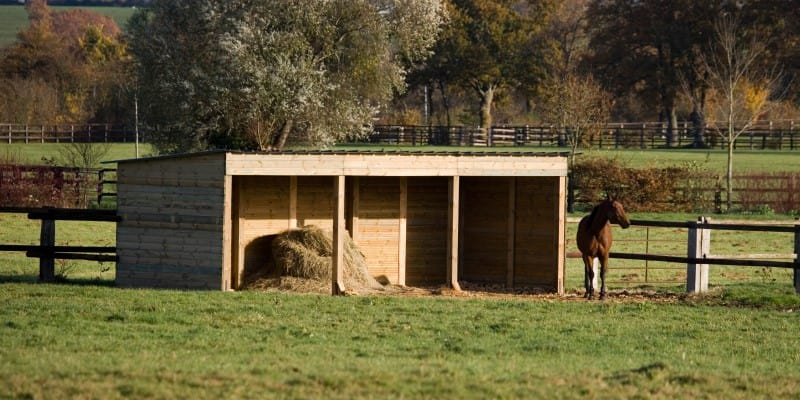 horse shelter in field