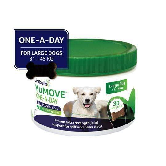 YuMOVE PLUS ONE A DAY front of pack - Large Dog