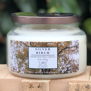 Silver Birch Holiday Christmas Candle