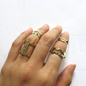 DOUBLE TEO HINGE RING