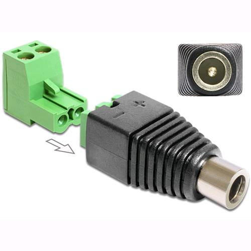 Delock Adattatore DC 2.5x5.5 mm Femmina Terminal Block 2 pin