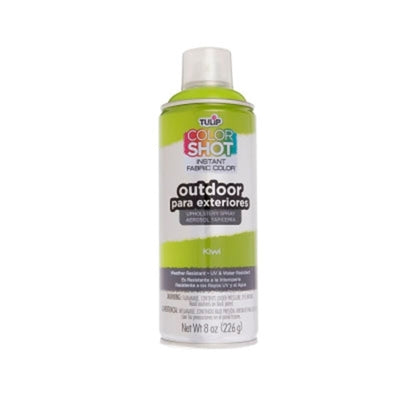 ColorShot Outdoor Kiwi Upholstery Spray (8 oz. can)