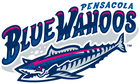 Pensacola Blue Wahoos Official Store