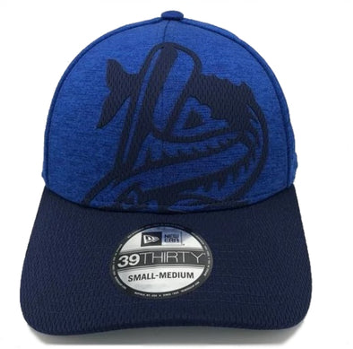 Pensacola Blue Wahoos New Era Overshadow 39Thirty