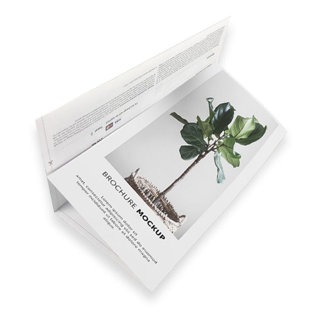 12pp DL Folded Brochures