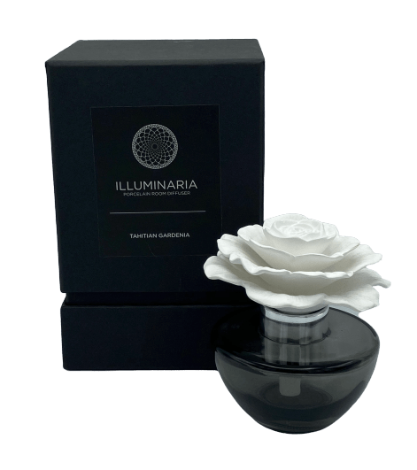 Illuminaria Porcelain Diffuser - RainTree Boutique