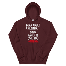 Load image into Gallery viewer, Dear Adult Children / Unisex Hooded Sweatshirt