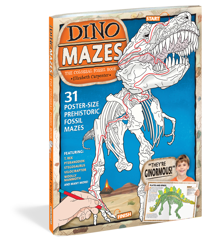 DinoMazes: Colossal Fossil Book