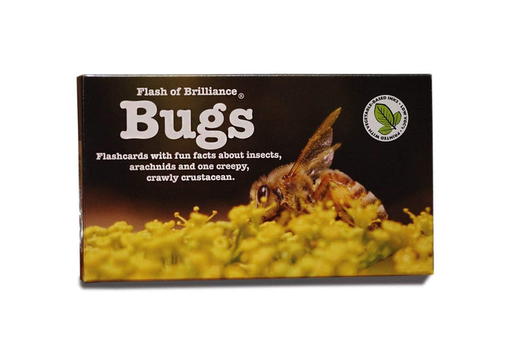 Flash of Brilliance Bugs Flash Cards