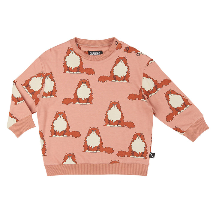 Cat Print Fall Sweater
