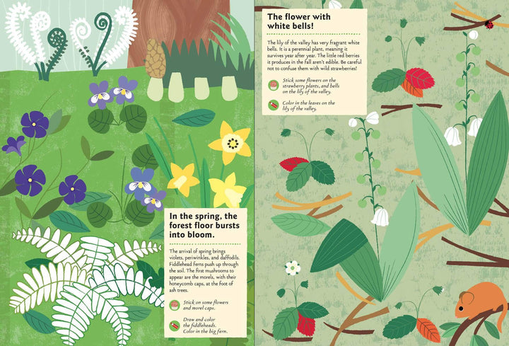 My Nature Sticker Activity Book: In the Forest