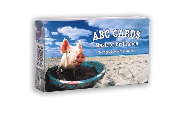 Flash of Brilliance ABC Flash Cards