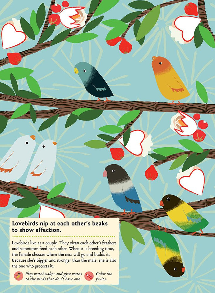 Birds of the World Activity Sticker Book - love birds