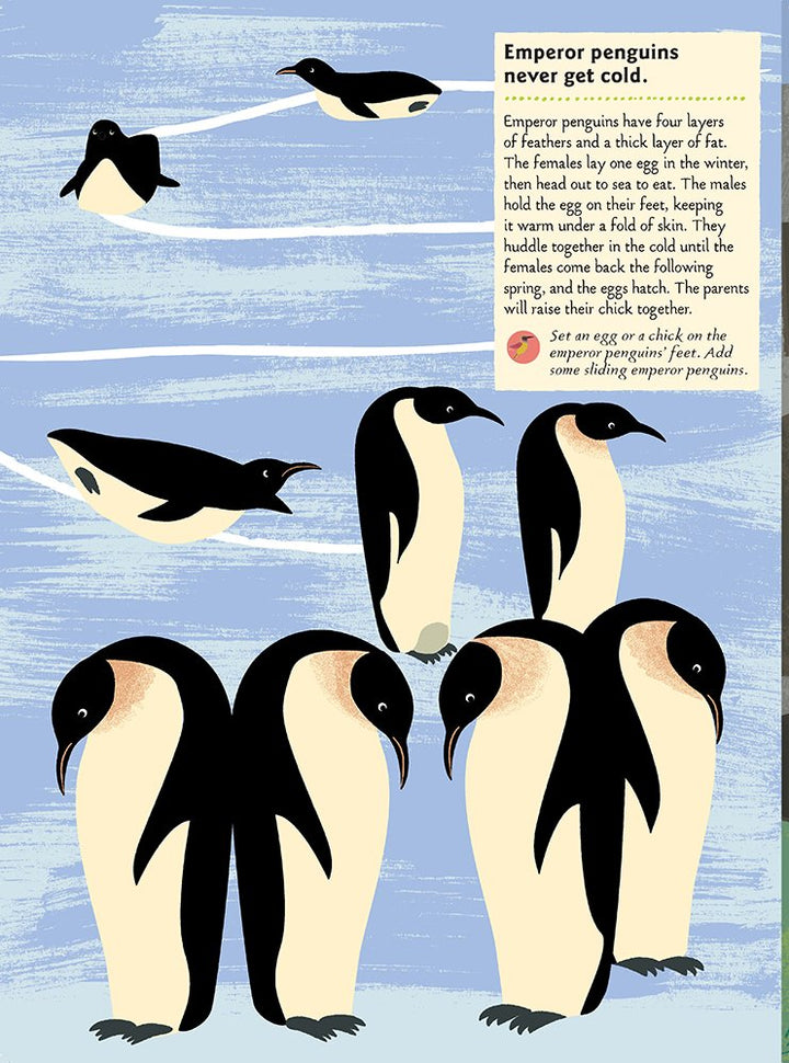 Birds of the World Activity Sticker Book - penguins