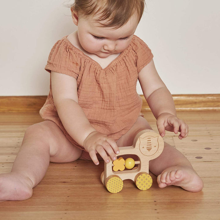 Petit Collage Wooden Push Toy (lion)