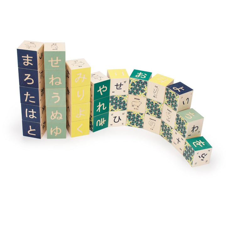 Wooden Japanese Toy Blocks