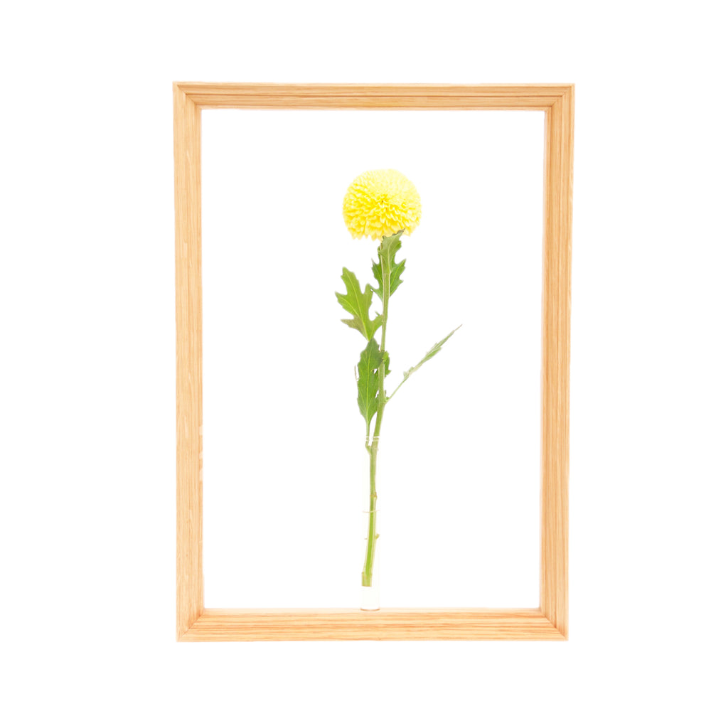 BULLPEN Exclusive Frame Flower Vase 《L》