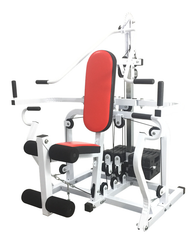Sanction Challenger Seriers Accessible Training Equipment T-6600D (with seat)