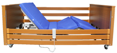 Sarah 5 Functions Bariatric Bed lowest