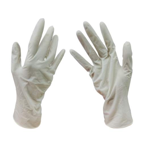 KS Medicare Latex Examination Gloves