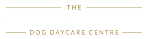 The Barking Bee Co.