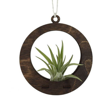 Wood Circle Air Plant Holder