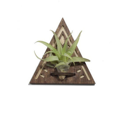 Wood Cut Air Plant Magnet