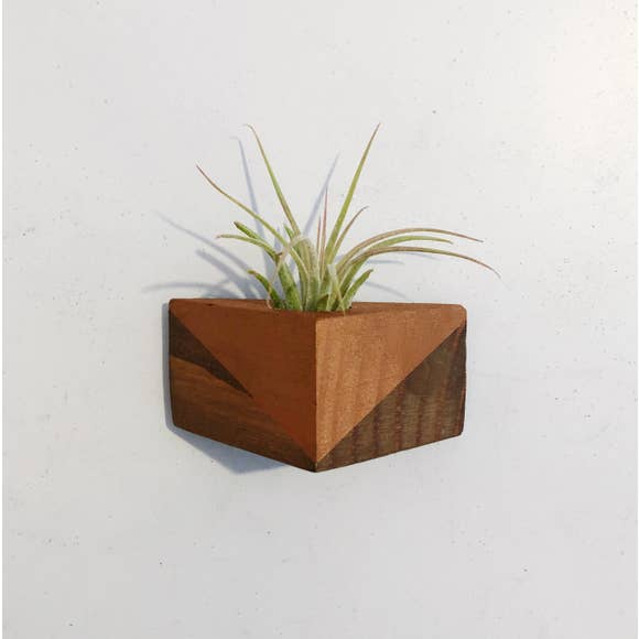 Magnetic Triangle Air Plant Holders (Multiple Color Options)