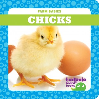 Chicks (Board Book)