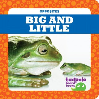 Big And Little (Board Book)