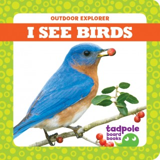 I See Birds (Board Book)