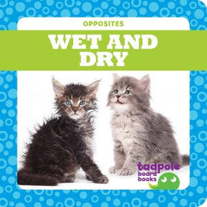 Wet & Dry (Board Book)