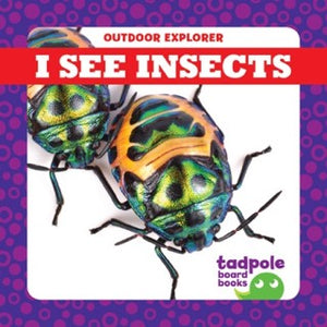 I See Insects (Board Book)