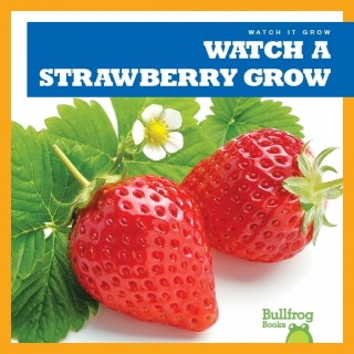 Watch A Strawberry Grow (Paperback)