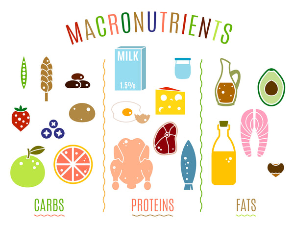 Keto Macronutrients and How They Affect the Body in the Ketogenic Diet
