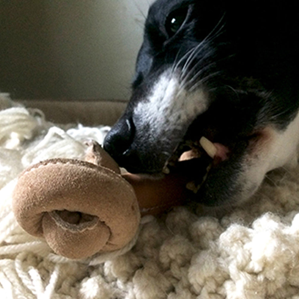 HuggleHide Bone-Shaped Toy