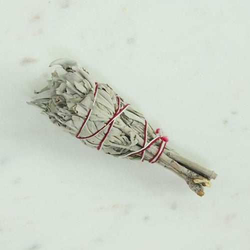 Katies Beauty Kitchen | White Sage Smudge Stick  - small | Katies Beauty Kitchen