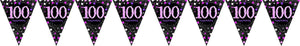 Prismatic Pink Pennant Banner 100th