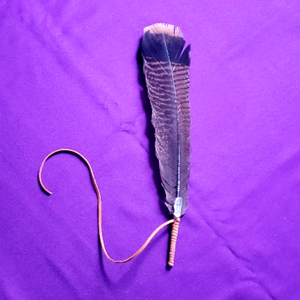 SACRED FEATHER FOR SAGING WITH CLEAR QUARTZ 2