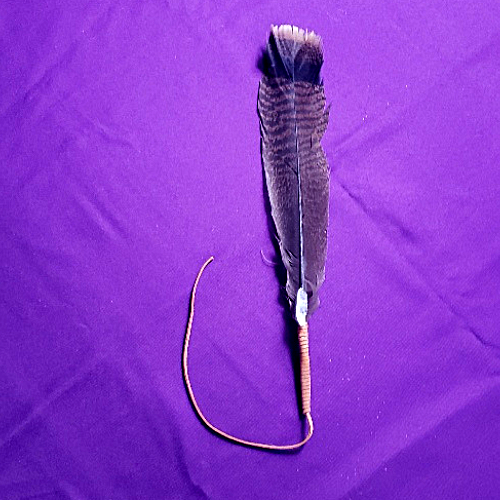 SACRED FEATHER FOR SAGING WITH CLEAR QUARTZ 6