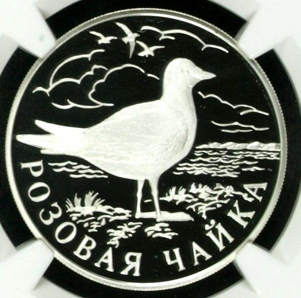 Russia 1999 Silver Coin Rouble Ross's Gull Red Book Wildlife Bird Y#643 NGC PF69