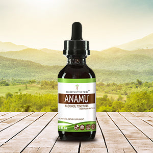 Anamu Tincture Extract, Wildcrafted Jamaican Guinea Hen Weed (Petiveria Alliacea) Dried Herb - secretsofthetribe