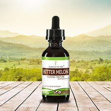 Load image into Gallery viewer, Bitter Melon Tincture Extract, Organic, May help balance blood sugar - secretsofthetribe