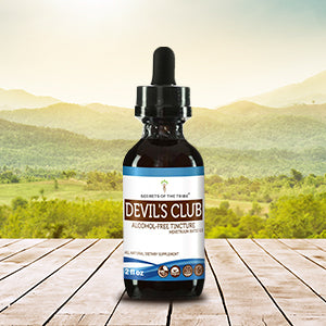 Devil's Club Tincture Extract, Wildcrafted Devil's Club (Oplopanax horridus) Dried Root - secretsofthetribe