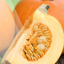 Load image into Gallery viewer, 02_Pumpkin-Seed_all_plants_300x300