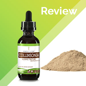 Collinsonia Tincture Extract, Wildcrafted Stoneroot (Collinsonia canadensis) Dried Root - secretsofthetribe
