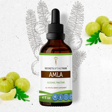Load image into Gallery viewer, Amla Tincture