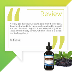 Black Elderberry Tincture Extract, Organic Sambucus Nigra Health of the Respiratory System - secretsofthetribe