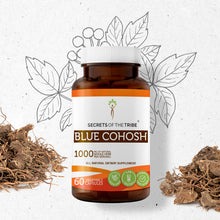 Load image into Gallery viewer, Blue Cohosh Capsules