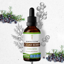 Load image into Gallery viewer, Cedar Berry Tincture Extract, Organic (Juniperus monosperma) Dried Berry - secretsofthetribe